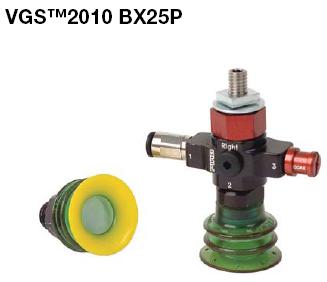 VGS 2010 BX25P VGS2010